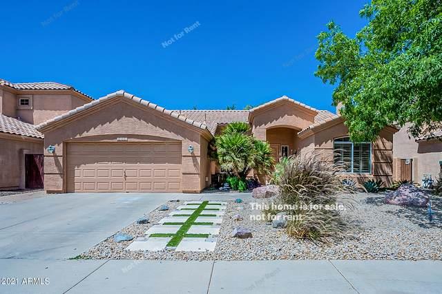 6102 W Linda Lane, Chandler, AZ 85226 (MLS #6240260) :: Yost Realty Group at RE/MAX Casa Grande