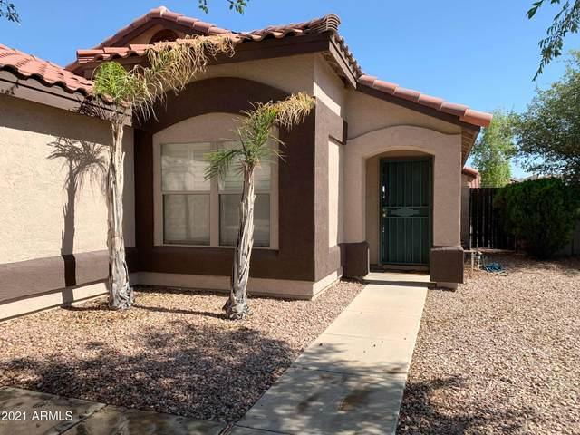 13447 W Canyon Creek Drive, Surprise, AZ 85374 (MLS #6240327) :: Conway Real Estate