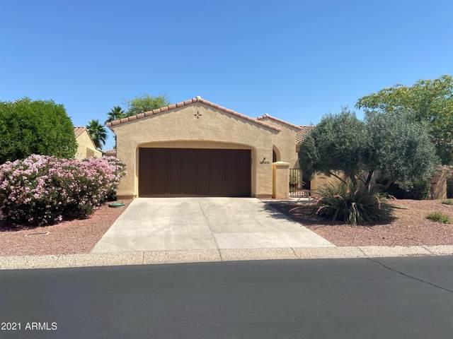 13818 W Sola Drive, Sun City West, AZ 85375 (MLS #6240354) :: Yost Realty Group at RE/MAX Casa Grande