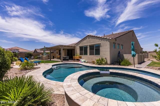 4455 S Matter, Mesa, AZ 85212 (MLS #6240368) :: Klaus Team Real Estate Solutions