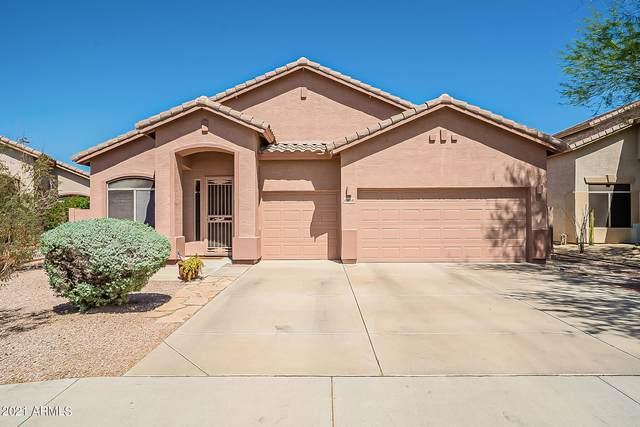 6964 W Paso Trail, Peoria, AZ 85383 (MLS #6240453) :: Howe Realty