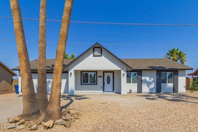 620 N Beck Avenue, Chandler, AZ 85226 (MLS #6240498) :: Yost Realty Group at RE/MAX Casa Grande
