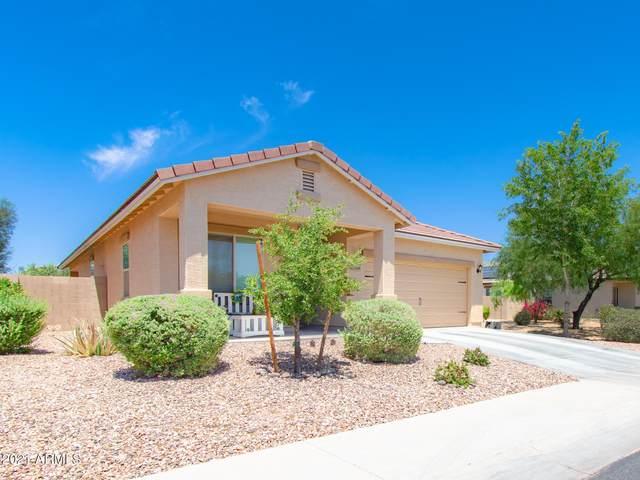 24446 W Sheraton Lane, Buckeye, AZ 85326 (MLS #6240517) :: Arizona Home Group