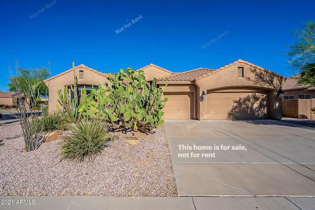 22643 N 47TH Place, Phoenix, AZ 85050 (MLS #6240524) :: Yost Realty Group at RE/MAX Casa Grande