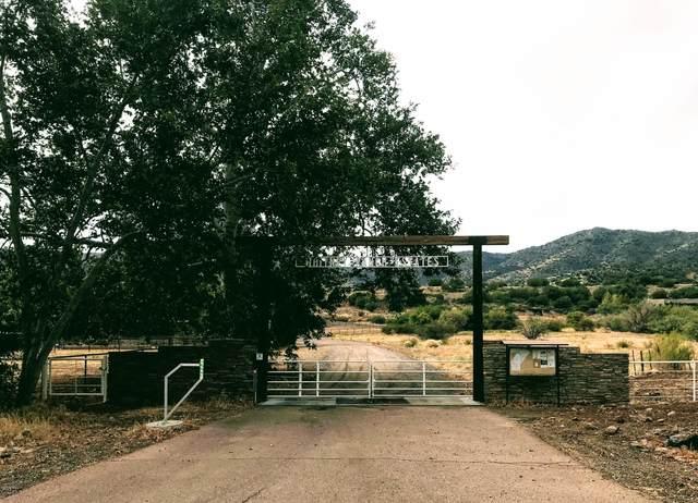 27887 E Mount Ord Drive, Sunflower, AZ 85263 (MLS #6240662) :: Fred Delgado Real Estate Group