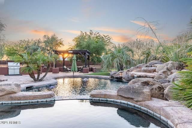 818 E Desert Hills Estate Drive, Phoenix, AZ 85086 (MLS #6240699) :: Yost Realty Group at RE/MAX Casa Grande