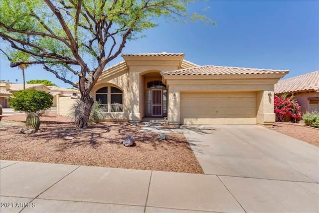 15622 S 7TH Street, Phoenix, AZ 85048 (MLS #6240807) :: Yost Realty Group at RE/MAX Casa Grande