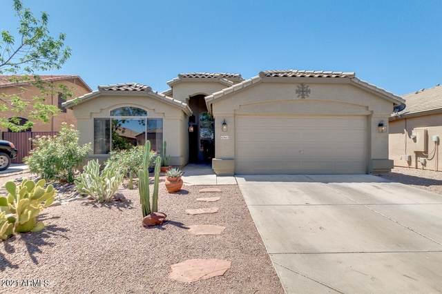 42463 W Chambers Drive, Maricopa, AZ 85138 (MLS #6240908) :: Yost Realty Group at RE/MAX Casa Grande