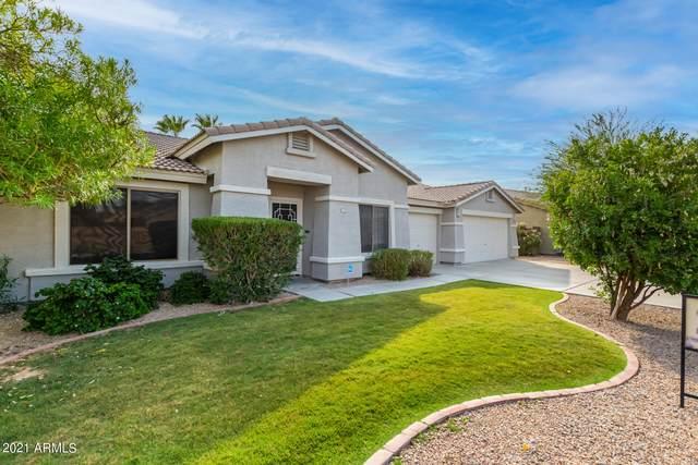 11252 S Indian Wells Drive, Goodyear, AZ 85338 (MLS #6240909) :: Lucido Agency