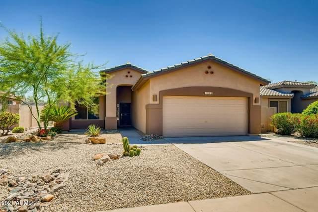 4349 E Walnut Road, Gilbert, AZ 85298 (MLS #6240987) :: Yost Realty Group at RE/MAX Casa Grande