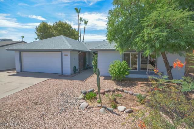 4309 E Sequoia Trail, Phoenix, AZ 85044 (MLS #6240989) :: Yost Realty Group at RE/MAX Casa Grande