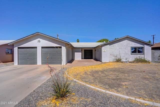 312 N Apache Drive, Chandler, AZ 85224 (MLS #6240995) :: Yost Realty Group at RE/MAX Casa Grande