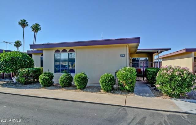 13622 N 98TH Avenue D, Sun City, AZ 85351 (MLS #6241024) :: Zolin Group