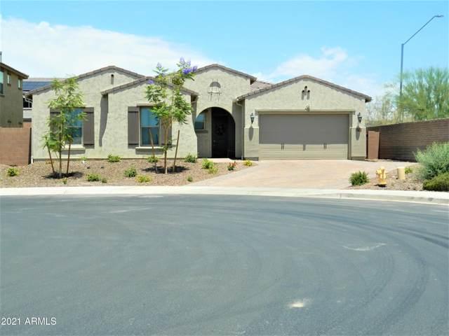 11836 W Morning Vista Drive, Peoria, AZ 85383 (MLS #6241034) :: Maison DeBlanc Real Estate