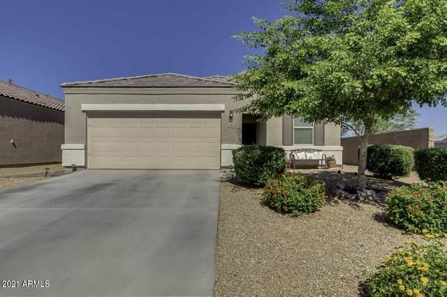 28948 N Selenite Lane, San Tan Valley, AZ 85143 (MLS #6241071) :: Arizona Home Group