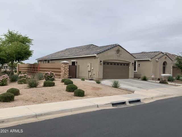 3006 E Quenton Street, Mesa, AZ 85213 (MLS #6241091) :: Yost Realty Group at RE/MAX Casa Grande