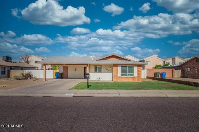 18630 N 17TH Avenue, Phoenix, AZ 85027 (MLS #6241147) :: Yost Realty Group at RE/MAX Casa Grande