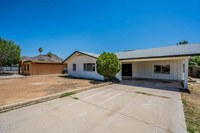 2307 W Windrose Drive, Phoenix, AZ 85029 (MLS #6241152) :: Midland Real Estate Alliance