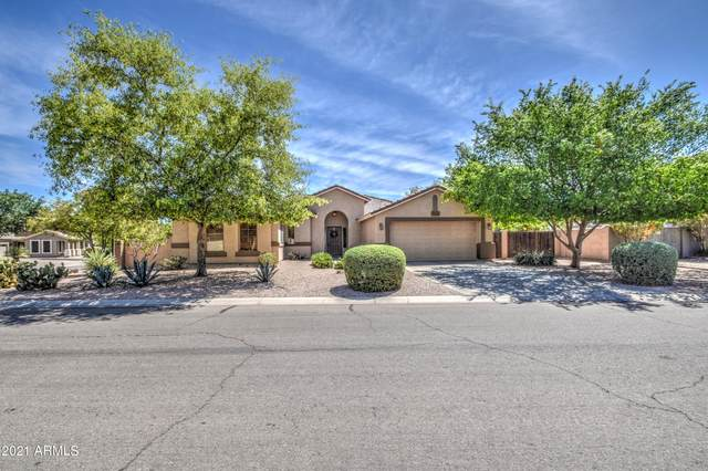 31165 N Saddlebag Lane, San Tan Valley, AZ 85143 (MLS #6241172) :: Yost Realty Group at RE/MAX Casa Grande