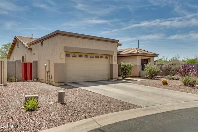2403 N Raven Circle, Mesa, AZ 85207 (MLS #6241187) :: Klaus Team Real Estate Solutions