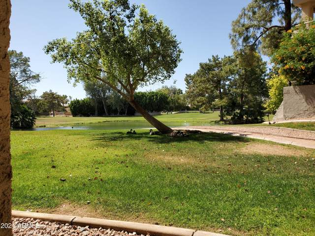5124 N 31ST Place #516, Phoenix, AZ 85016 (MLS #6241255) :: Zolin Group