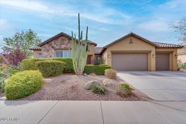3963 E Elmwood Place, Chandler, AZ 85249 (MLS #6241286) :: Yost Realty Group at RE/MAX Casa Grande