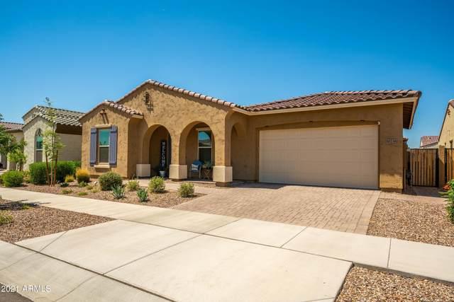 10236 E Tiger Lily Avenue, Mesa, AZ 85212 (MLS #6241292) :: Yost Realty Group at RE/MAX Casa Grande