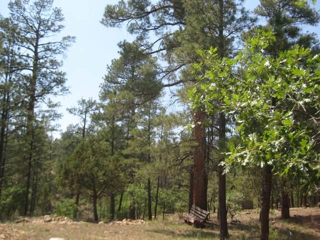2664 Canyon View Drive, Happy Jack, AZ 86024 (MLS #6241306) :: The Newman Team