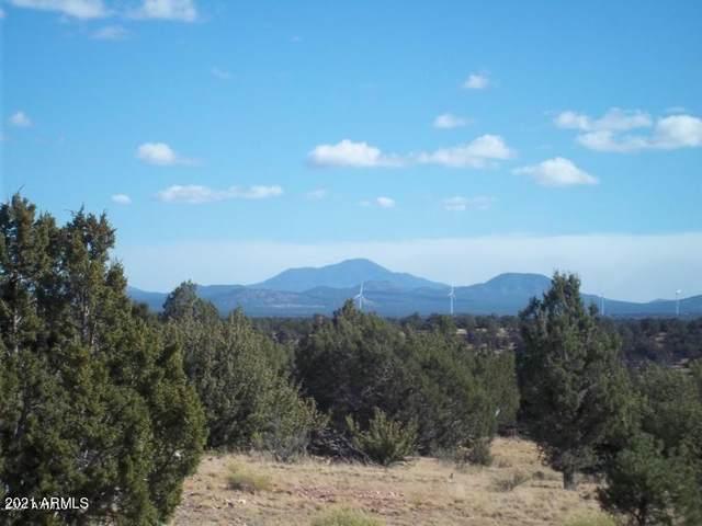 10142 S Sun Valley Trail, Williams, AZ 86046 (MLS #6241337) :: Yost Realty Group at RE/MAX Casa Grande