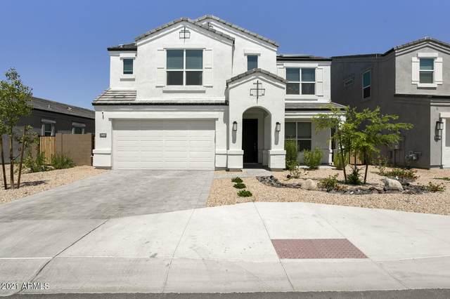 24237 N 21ST Street, Phoenix, AZ 85024 (MLS #6241351) :: Yost Realty Group at RE/MAX Casa Grande