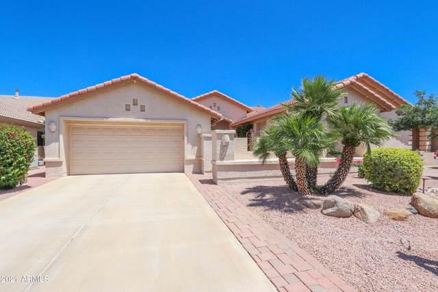 24617 S Cedarcrest Drive, Sun Lakes, AZ 85248 (MLS #6241352) :: The Copa Team | The Maricopa Real Estate Company