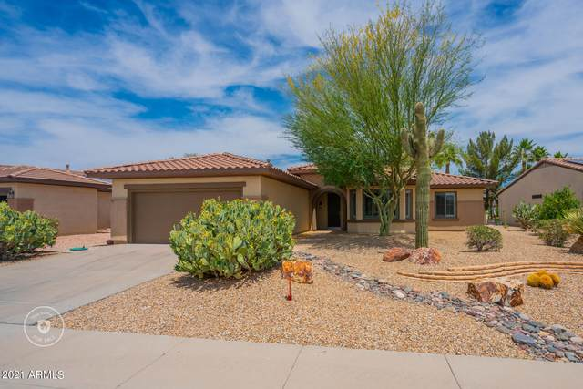 15046 W Cooperstown Way, Surprise, AZ 85374 (MLS #6241373) :: Yost Realty Group at RE/MAX Casa Grande