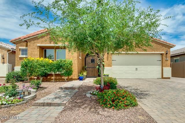 10306 W Fetlock Trail, Peoria, AZ 85383 (MLS #6241398) :: Howe Realty