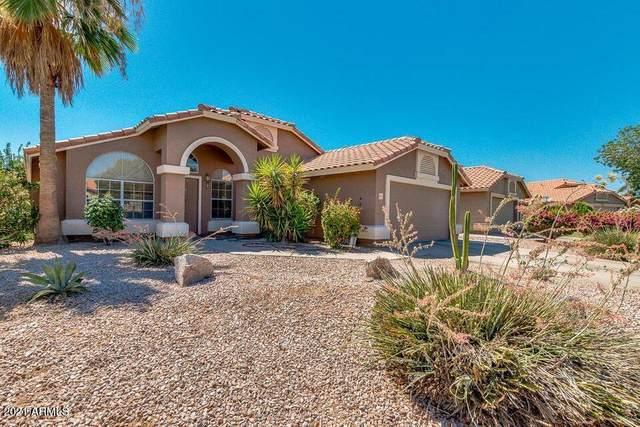 2164 S Edgewater Circle, Mesa, AZ 85209 (MLS #6241447) :: Yost Realty Group at RE/MAX Casa Grande