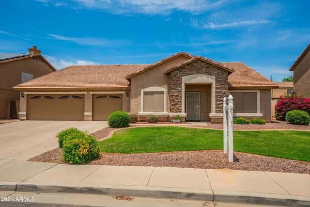 9528 E Javelina Avenue, Mesa, AZ 85209 (MLS #6241619) :: Conway Real Estate