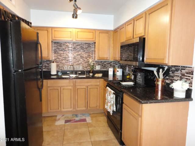 1702 W Tuckey Lane #221, Phoenix, AZ 85015 (MLS #6241684) :: Conway Real Estate