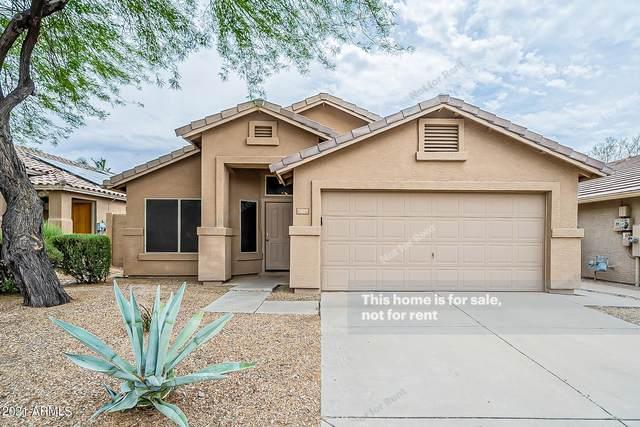 26259 N 43RD Place, Phoenix, AZ 85050 (MLS #6241893) :: Yost Realty Group at RE/MAX Casa Grande