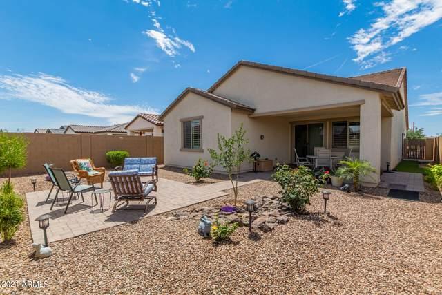 10304 E Tahoe Avenue, Mesa, AZ 85212 (MLS #6241895) :: Conway Real Estate