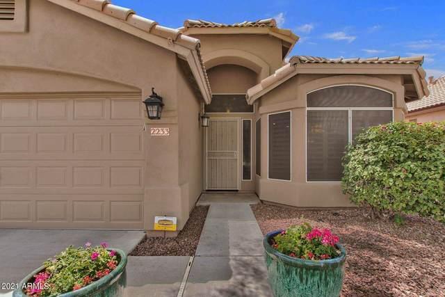 2233 E Menadota Drive, Phoenix, AZ 85024 (MLS #6241901) :: Yost Realty Group at RE/MAX Casa Grande
