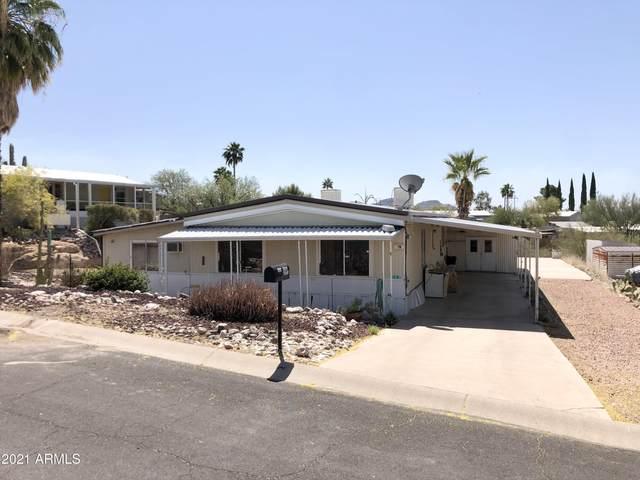 303 S Alta Vista Drive, Queen Valley, AZ 85118 (MLS #6241990) :: Yost Realty Group at RE/MAX Casa Grande