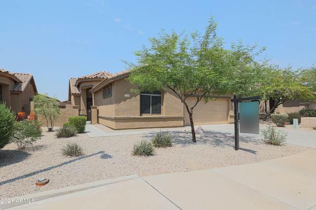 17536 W Desert View Lane, Goodyear, AZ 85338 (MLS #6242058) :: Lucido Agency