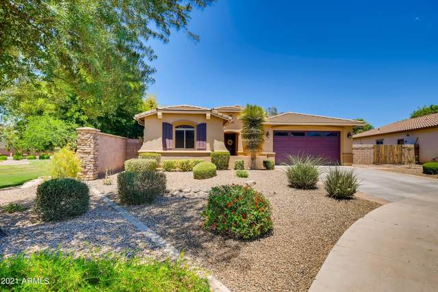 2664 E Lodgepole Drive, Gilbert, AZ 85298 (MLS #6242109) :: Conway Real Estate