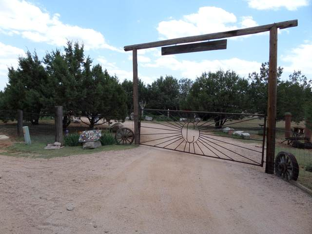 440 S Homestead Road, Young, AZ 85554 (MLS #6242135) :: Midland Real Estate Alliance