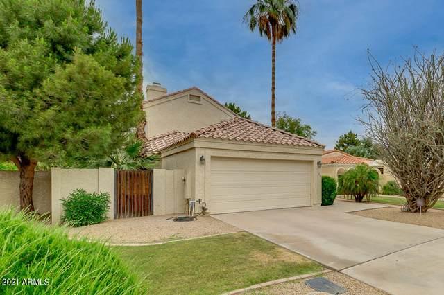 7164 N Via De Amigos, Scottsdale, AZ 85258 (MLS #6242223) :: Yost Realty Group at RE/MAX Casa Grande