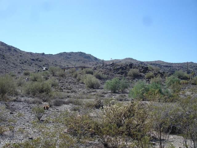 3425 E Highline Canal Road, Phoenix, AZ 85042 (MLS #6242245) :: Yost Realty Group at RE/MAX Casa Grande