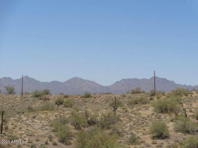 0 N Sandy Bluff Road, Fort McDowell, AZ 85264 (MLS #6242248) :: Klaus Team Real Estate Solutions