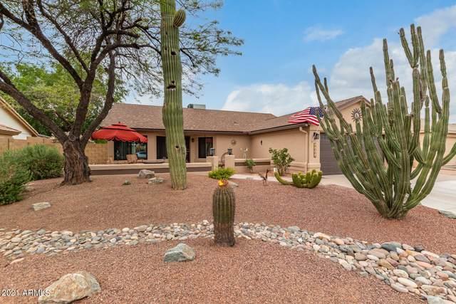 4564 W Earhart Way, Chandler, AZ 85226 (MLS #6242302) :: Yost Realty Group at RE/MAX Casa Grande
