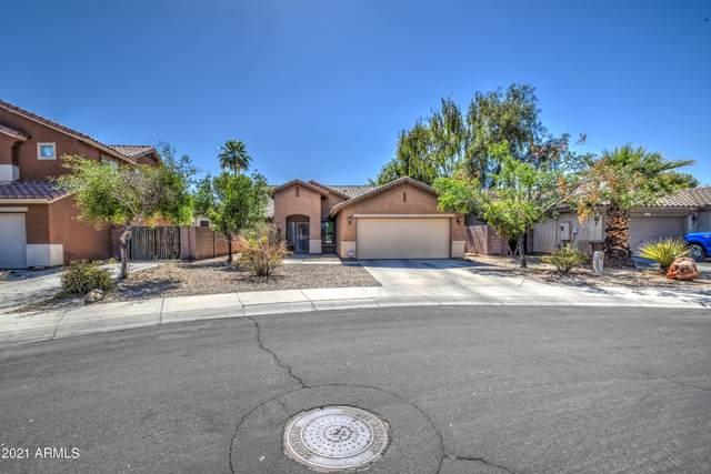 2768 S 155TH Lane, Goodyear, AZ 85338 (MLS #6242330) :: Yost Realty Group at RE/MAX Casa Grande