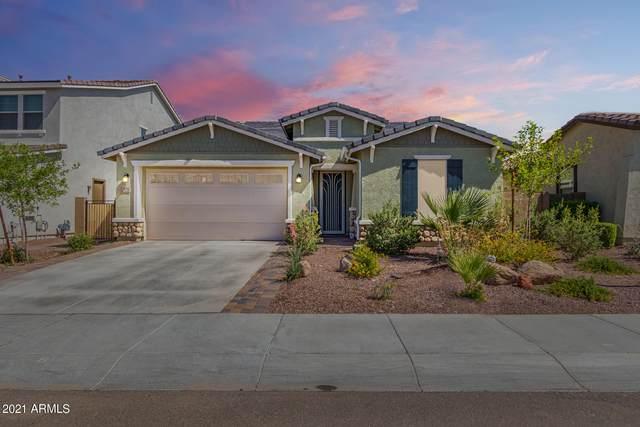 9772 W Cashman Drive, Peoria, AZ 85383 (MLS #6242345) :: The Daniel Montez Real Estate Group