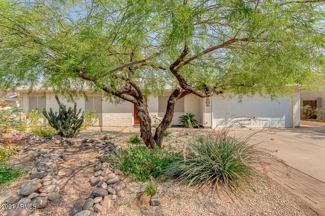 4309 E Ponca Street, Phoenix, AZ 85044 (MLS #6242440) :: Yost Realty Group at RE/MAX Casa Grande
